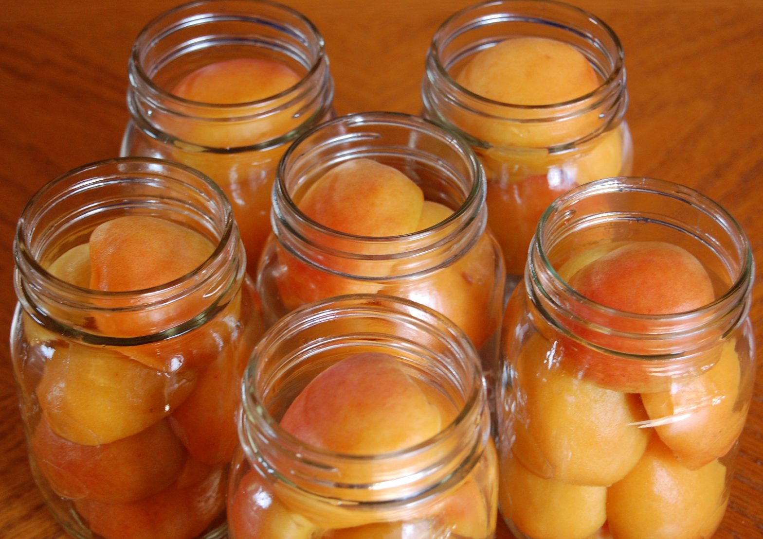 Apricot in Light Syrup